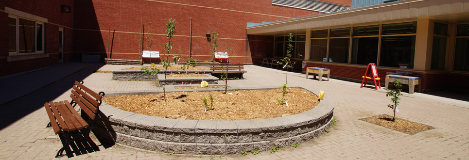 St. Wilfrid Catholic School courtyard, with a garden and benches.